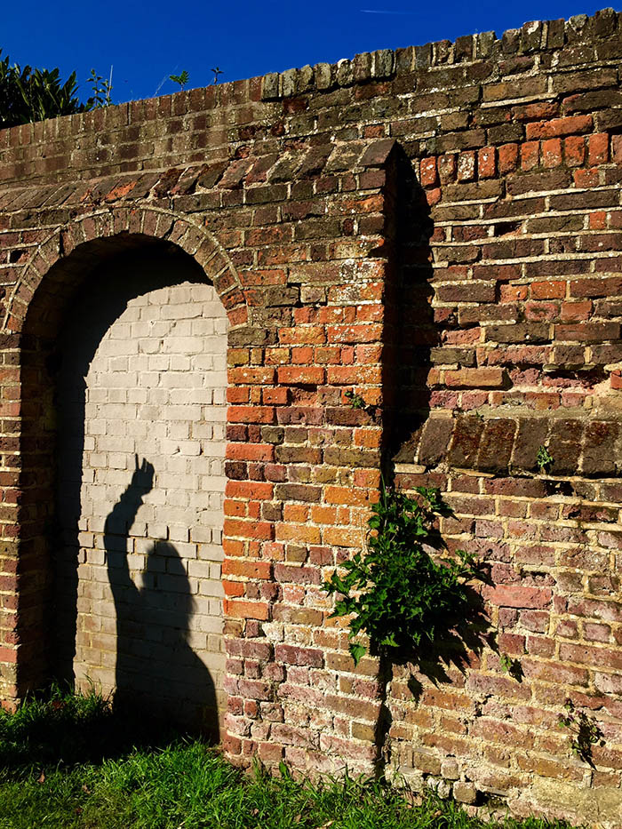 Shadow on the wall...